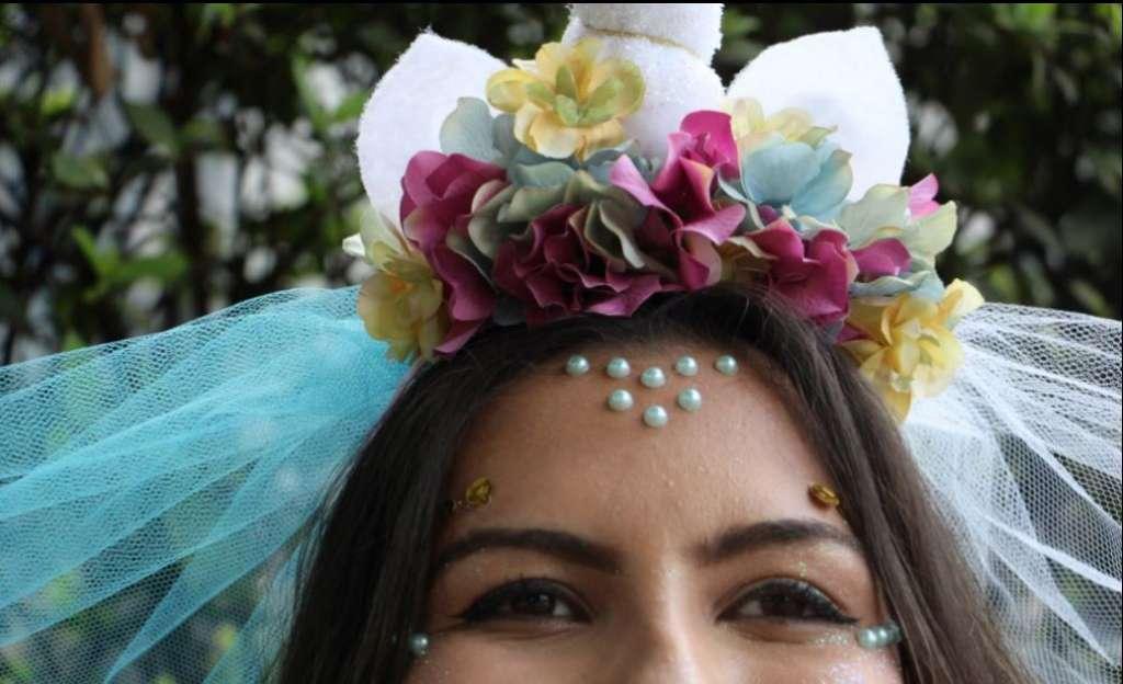 fantasia de carnaval