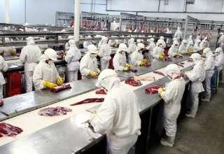 china importa carne brasileira