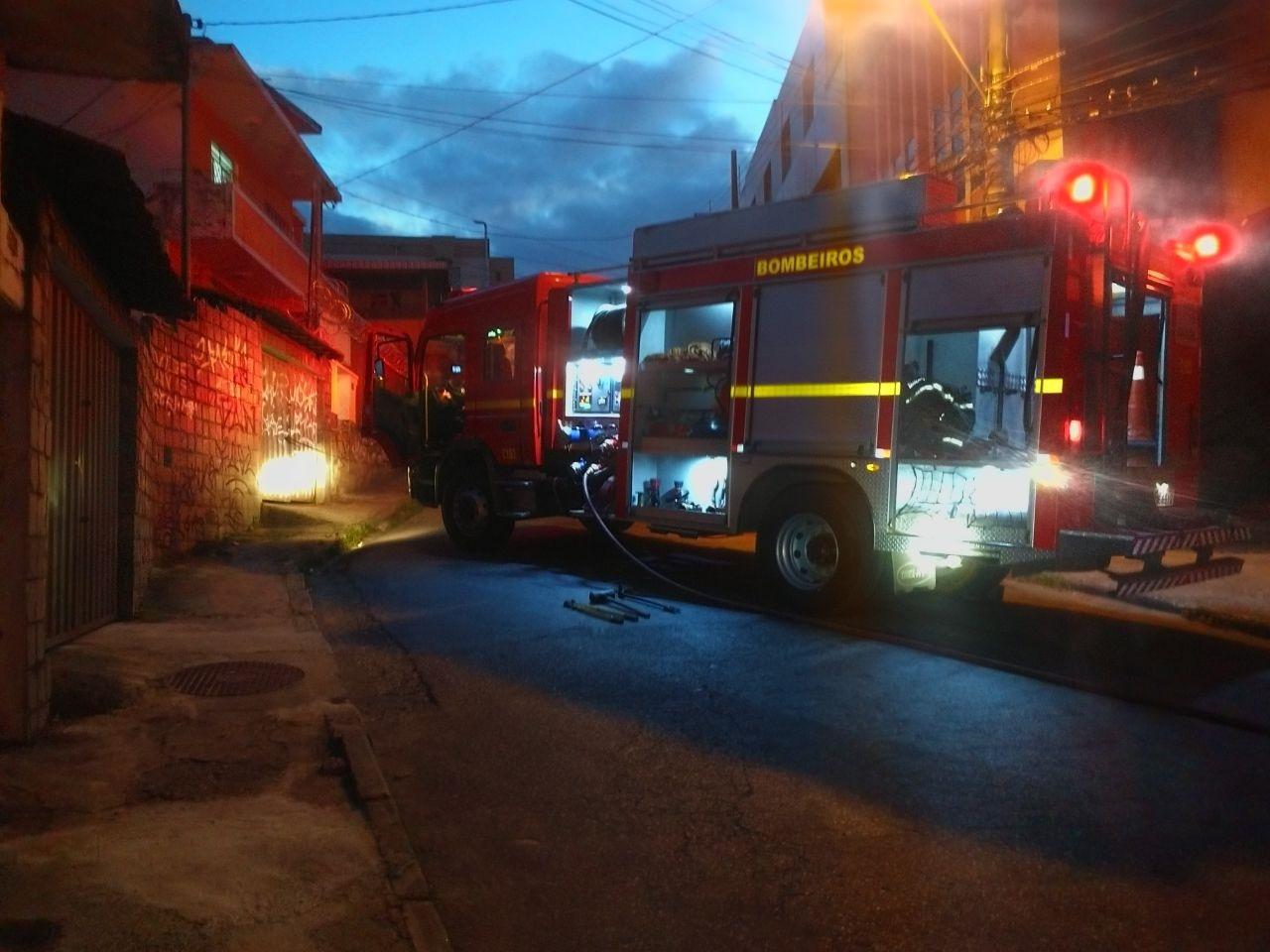 Bombeiros atendem três gatos feridos em incêndio na Capital