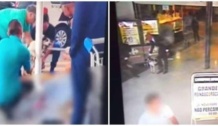Vídeo Mostra Que Agressor De Cachorro Foi O Segurança Do