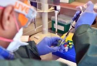 testagem massa para coronavírus