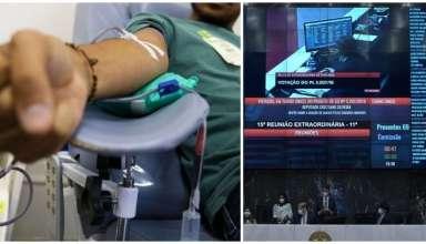 almg derruba restricao doacao sangue homossexuais