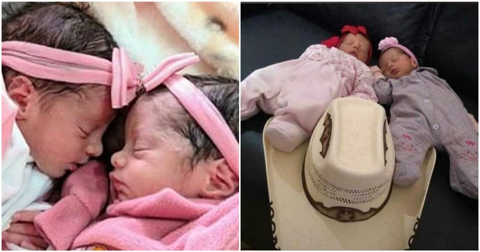 Bebês gêmeas morrem após ataque de cachorro da família