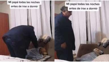 Pai colocando cachorro para dormir