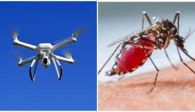 drone mosquito da dengue aedes aegypti