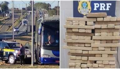 Maconha apreendida em ônibus em Minas gerais