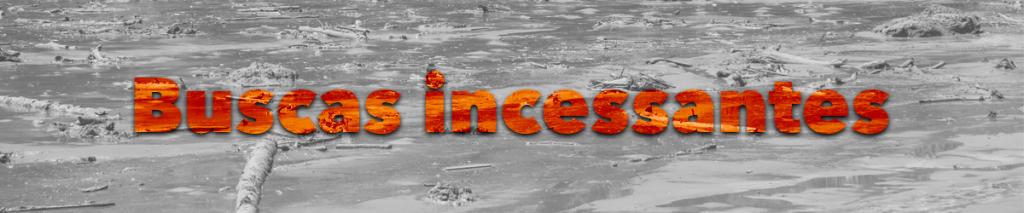Buscas incessantes intertítulo especial Brumadinho