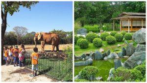 zoológico jardim botânico bh